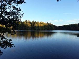 retour de stage finlande