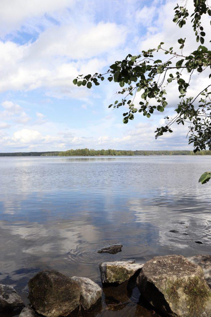 Tampere 2019